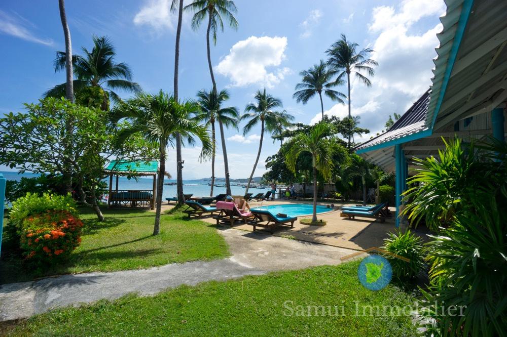 Resort + restaurant à vendre - 16 chambres - bord de mer - Lamai