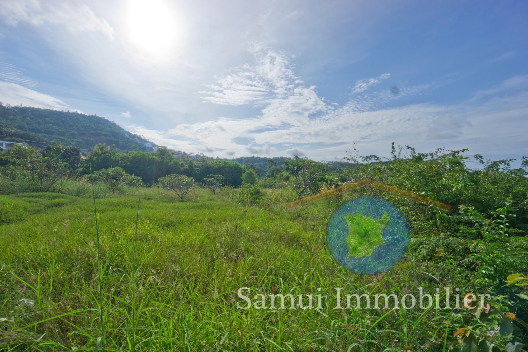 Land for sale - sea view - Bophut